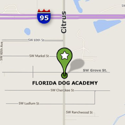 Our Location in Florida